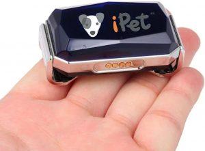 GPS para perro tamaño pequeño