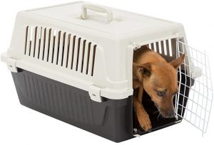 Ferplast Trasportín rígido para Perros