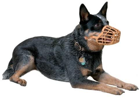 Bozal para perro tipo cesta plástico