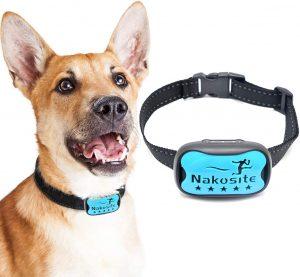 Collar Antiladrido para perros