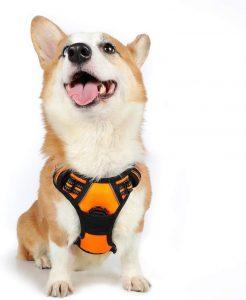 Arnés para perro de razas pequeñas, medianas y grandes