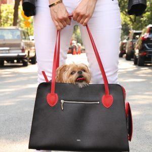 Trasportin tipo bolso para perro pequeño