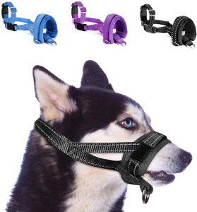 Bozal para perro de nylon resistente