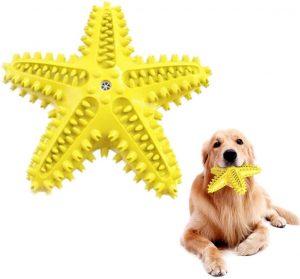 Juguete limpia dientes para perros de goma