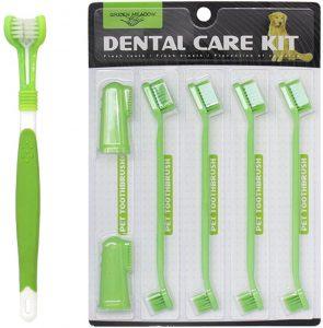 Kit de cepillos de dientes para perro