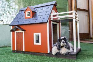 Hermosa casa para perro de obra
